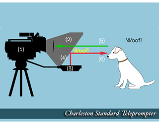 Graphic illustrates how Standard Teleprompter works